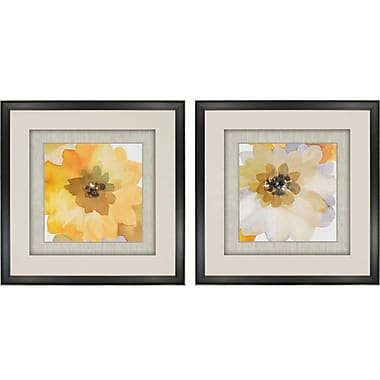 Paragon Ginger Gold by Jacobs 2 Piece Framed Painting Print Set (Set of 2)