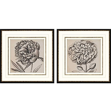 Paragon Graphic Floral I by Anonymous 2 Piece Framed Graphic Art Set