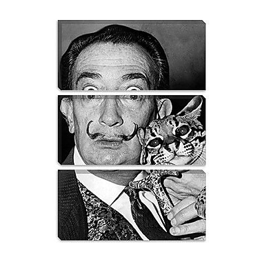 iCanvas 'Portrait of Salvador Dali' by Roger Higgins Photographic Print on Canvas
