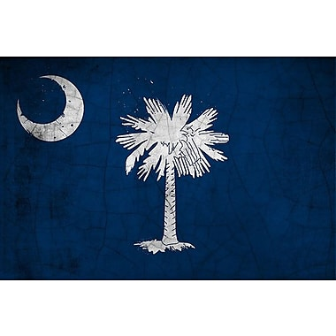 iCanvas Flags South Carolina Cracks Graphic Art on Wrapped Canvas; 8'' H x 12'' W x 0.75'' D