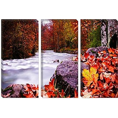 iCanvas 'Autumn Flow' by Dan Ballard Photographic Print on Canvas; 26'' H x 40'' W x 0.75'' D