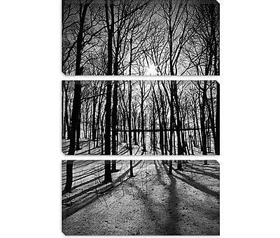 iCanvas Scenic Forest Ridges Moraine Photographic Print on Canvas; 18'' H x 12'' W x 0.75'' D