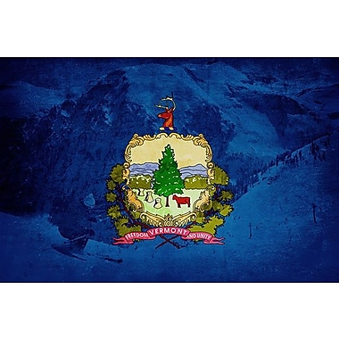 iCanvas Flags Vermont Skiing Graphic Art on Wrapped Canvas; 12'' H x 18'' W x 0.75'' D