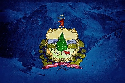 iCanvas Flags Vermont Skiing Graphic Art on Wrapped Canvas; 8'' H x 12'' W x 0.75'' D