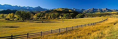 iCanvas Panoramic Trees in a Field, Colorado Photographic Print on Wrapped Canvas