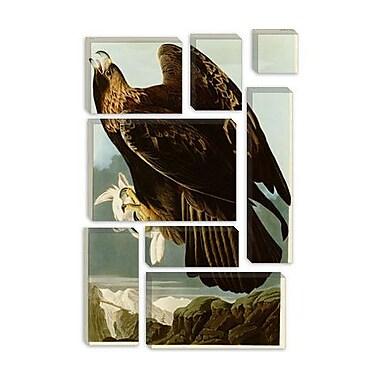 iCanvas 'Golden Eagle' by John James Audubon Painting Print on Canvas; 26'' H x 18'' W x 0.75'' D