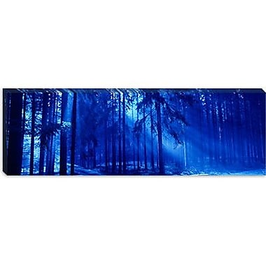 iCanvas Panoramic Trees Titisee Germany Photographic Print on Canvas; 24'' H x 72'' W x 1.5'' D