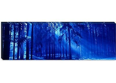 iCanvas Panoramic Trees Titisee Germany Photographic Print on Canvas; 12'' H x 36'' W x 1.5'' D