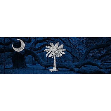 iCanvas Flags South Carolina Graphic Art on Wrapped Canvas; 16'' H x 48'' W x 1.5'' D