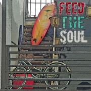 Graffitee Studios Surf Feed The Soul Graphic Art on Wrapped Canvas