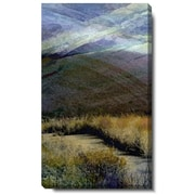 Studio Works Modern ''Sonoma Meadow I'' by Zhee Singer Graphic Art on Wrapped Canvas
