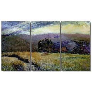 ''Sonoma Meadow'' by Zhee Singer 3 Piece Graphic Art on Wrapped Canvas Set (Set of 3)
