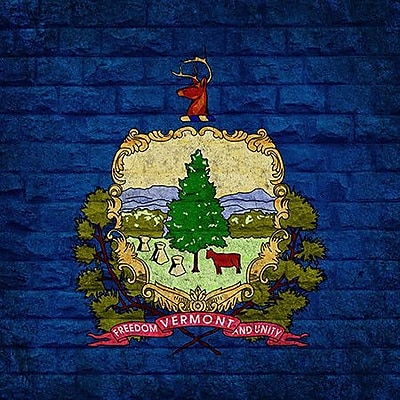 iCanvas Flags Vermont Bricks Graphic Art on Wrapped Canvas; 26'' H x 26'' W x 0.75'' D