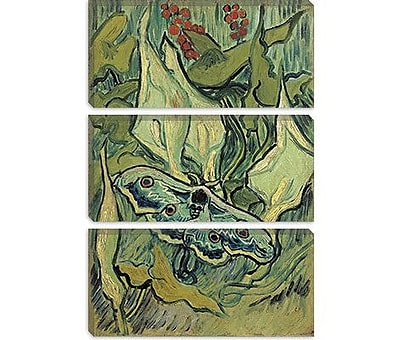 iCanvas 'Emperor Moth' by Vincent van Gogh Painting Print on Canvas; 26'' H x 18'' W x 1.5'' D