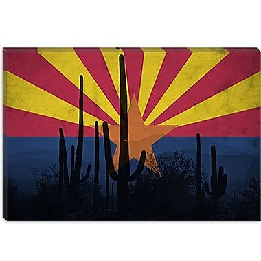 iCanvas Arizona Flag, Cactus Grunge Graphic Art on Canvas; 26'' H x 40'' W x 1.5'' D