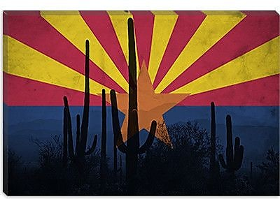 iCanvas Arizona Flag, Cactus Grunge Graphic Art on Canvas; 40'' H x 60'' W x 1.5'' D