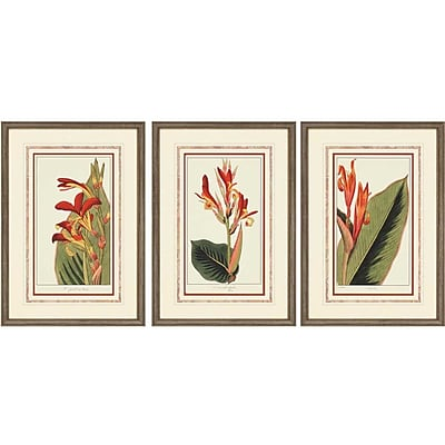 Paragon Roses by Dietrich 3 Piece Framed Graphic Art Set