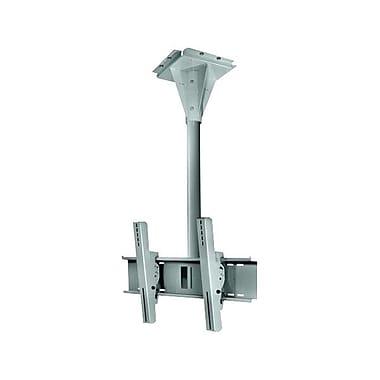 Peerless-AVMD – Support de plafond pivotant résistant au vent ECMU-03-C 3 po pour écran plat, cap. 200 lb, gris pierre