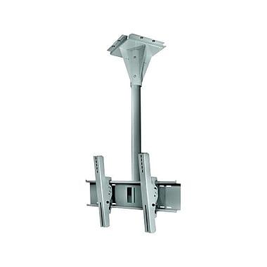 Peerless-AVMD – Support de plafond pivotant résistant au vent ECMU-04-C de 4 po pour écran plat, cap. 200 lb, gris pierre