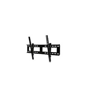 Peerless-AV® EPT650-S Corrosion Resistant Universal Tilt Wall Mount For Screen, 32