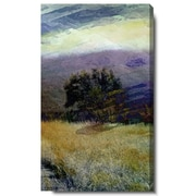 Studio Works Modern ''Sonoma Meadow II'' by Zhee Singer Graphic Art on Wrapped Canvas
