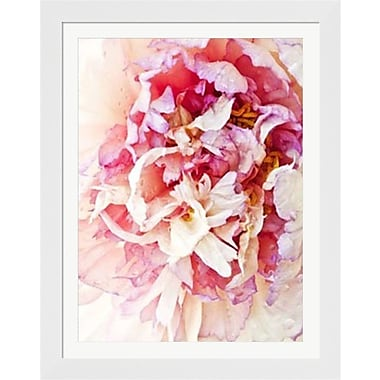 Evive Designs Monet's Peony I by Rachel Perry Framed Graphic Art