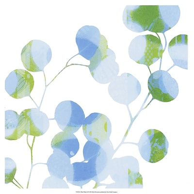 Evive Designs Blue Plums II by Ricki Mountain Graphic Art