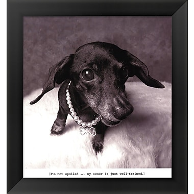 Evive Designs Lexi by Ginger DeLater Framed Photographic Print