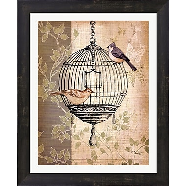 Evive Designs Botanical Birdcage I by Paul Brent Framed Graphic Art