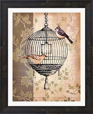 Evive Designs Botanical Birdcage I by Paul Brent Framed Graphic Art