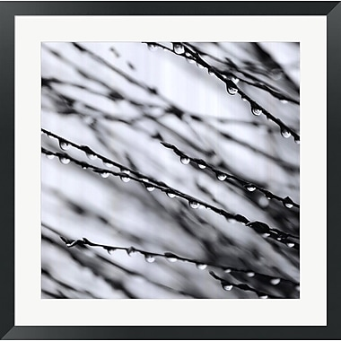 Evive Designs Jewel Drops by David Gray Framed Photographic Print