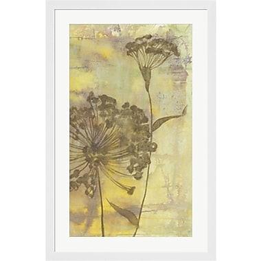 Evive Designs Dandelion Dance II by Jennifer Goldberger Framed Painting Print