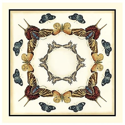 Evive Designs Butterfly Collector I by Chariklia Zarris Graphic Art