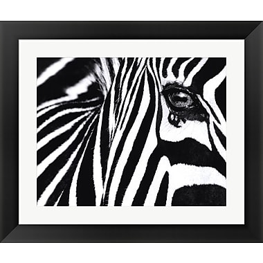 Evive Designs Black and White II by Rocco Sette Framed Photographic Print