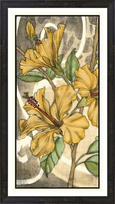 Evive Designs Hibiscus Song I by Jennifer Goldberger Framed Painting Print