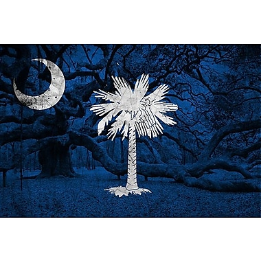 iCanvas Flags South Carolina Graphic Art on Wrapped Canvas; 12'' H x 18'' W x 0.75'' D