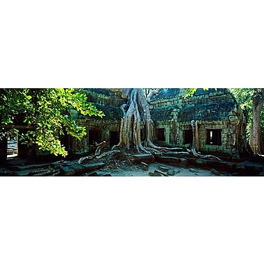 iCanvas Panoramic Wat Temple Complex of Ta-Prohm Cambodia Photographic Print on Wrapped Canvas