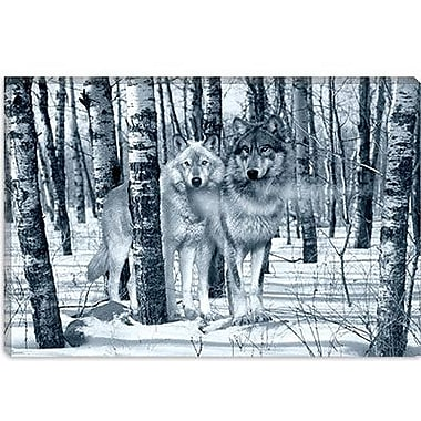iCanvas 'Snow Shadows Silvertones' by Gordon Semmens Photographic Print on Wrapped Canvas