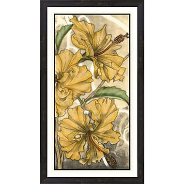 Evive Designs Hibiscus Song II by Jennifer Goldberger Framed Painting Print