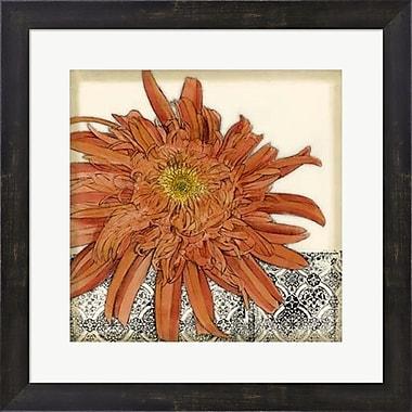 Evive Designs Botanica I by Jennifer Goldberger Framed Painting Print