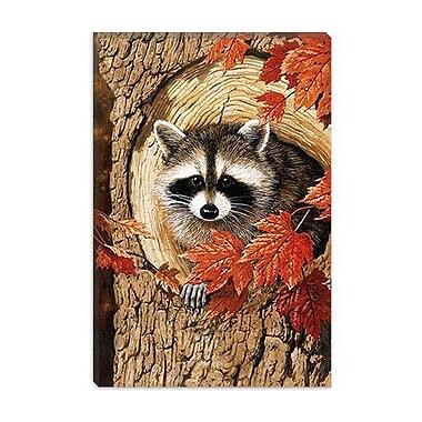 iCanvas 'Raccoon' by William Vanderdasson Graphic Art on Canvas; 26'' H x 18'' W x 1.5'' D