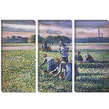 iCanvas 'Picking Peas' by Camille Pissarro Painting Print on Canvas; 12'' H x 18'' W x 1.5'' D