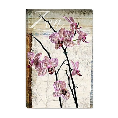 iCanvas ''Orchids'' by Luz Graphics Graphic Art on Canvas; 26'' H x 18'' W x 1.5'' D