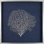 Mirror Image Home Large Sea Fan Framed Graphic Art
