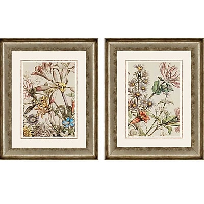 Paragon October Detail by Furber 2 Piece Framed Graphic Art Set