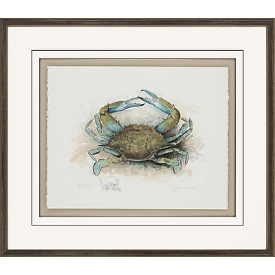 Paragon He Crab Gicl e by Leonard Framed Painting Print