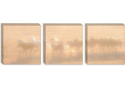 iCanvas 'Free Run' by Dan Ballard Photographic Print on Canvas; 16'' H x 48'' W x 1.5'' D