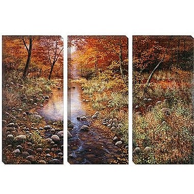 iCanvas 'Autumn Gold' by Bill Makinson Photographic Print on Canvas; 18'' H x 26'' W x 0.75'' D