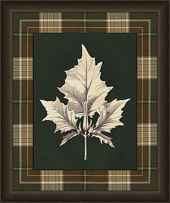 Melissa Van Hise Leaves in Plaid II Framed Graphic Art