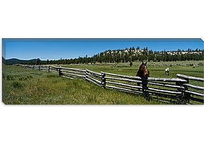 iCanvas Panoramic Two Horses in a Field, Arizona Photographic Print on Wrapped Canvas